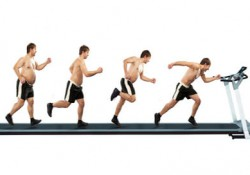 Abnehmen mit dem moveguard Trainingsplan