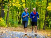 moveguard unterstützt und motiviert beim Training